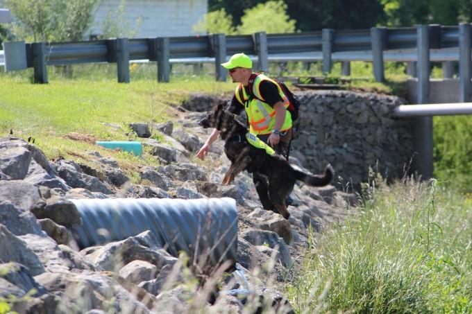 Rain gardens & sewer dog 015-1