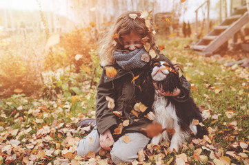fall dog activities
